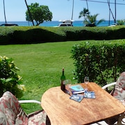 Deal--sparkling New! Kailua Kona's Best Beach. Swim-snorkel-bodysurf-dive! Wifi