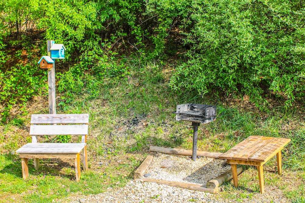 BBQ/Picnic Area, 'it's Five O' Clock Here,' HOT Tub, Waterfront, Facing the Blue Ridge Parkway