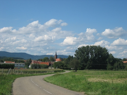 Holiday Rental in one of the Most Beautiful Villages of France in Alsace