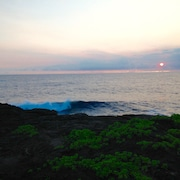Live the Oceanfront Dream - Perfect Location for Exploring the Big Island ?