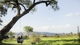 Little Governors Camp - Masai Mara Hotels