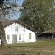 Beautiful Renovated Barn in Pretty Wooded Park - Mimizan 10 Minutes From the Ocean