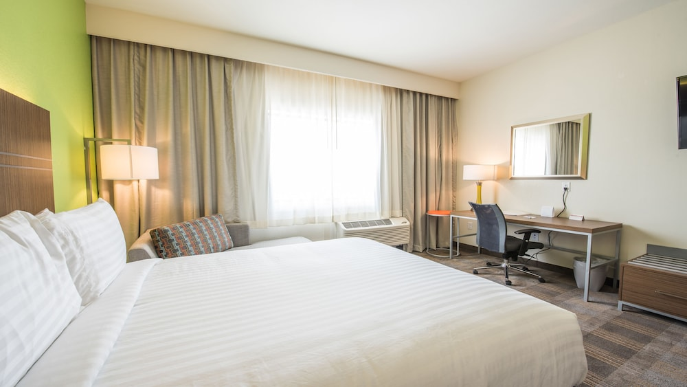 Room, Holiday Inn Express & Suites-Dripping Springs - Austin Area, an IHG Hotel