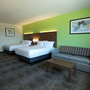 Holiday Inn Express & Suites-Dripping Springs - Austin Area