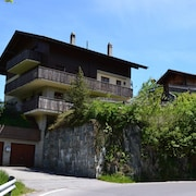 Spacious Studio, Beautiful View, Near Aletsch ski Area, in the Hiking Area