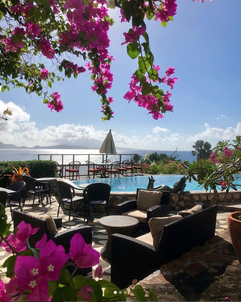Pool, Palms Court Gardens, Romantic Cottage, Luxury Pool, Ocean View