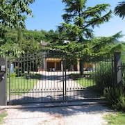 The Apartment Margherita is set in a Private Park Surrounded by Olive Trees