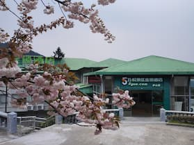 Wuyue Scenic Area hotel Lushan Mountain