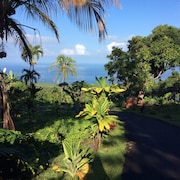 Honaunau, Just 5 Minutes From Snorkeling and Dolphin Watching