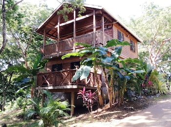Tortuga Bahia Lower