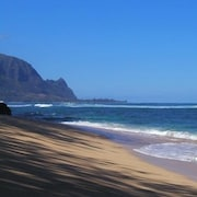 Kauai Luxurious Oceanfront Puu Poa Condo-whale Watching at its Best