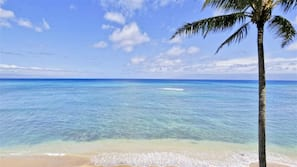 Beach nearby, sun loungers, beach towels