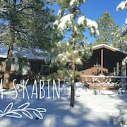 Cozy 3 Bedroom 2 Bathroom Cabin Nestled in the Pines