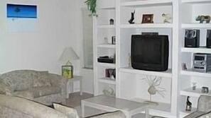 Una televisión, un reproductor de DVD, libros, un reproductor estéreo