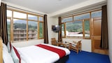 OYO Rooms 147 Hadimba Temple Road - Manali Hotels