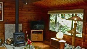 Télévision, cheminée, livres, chaîne hi-fi