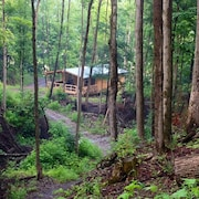 Cabin Creek Getaway - Waterfalls on 100 Acre Private Forest!