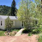 Escape to Black Bear Hollow~secluded in a Beautiful Aspen Grove & Pet Friendly!
