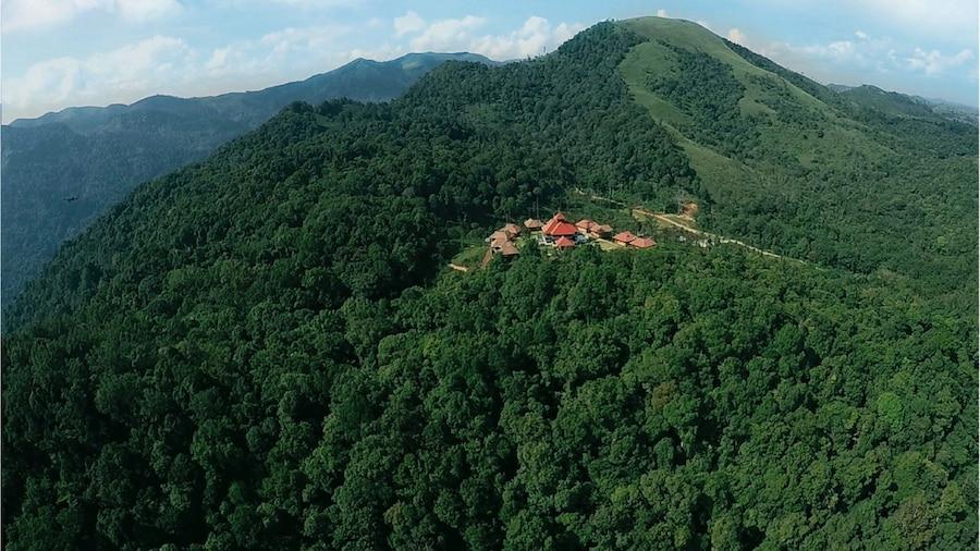 Wild Planet Resort
