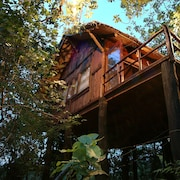 Pugdundee Safaris- Tree House Hideaway