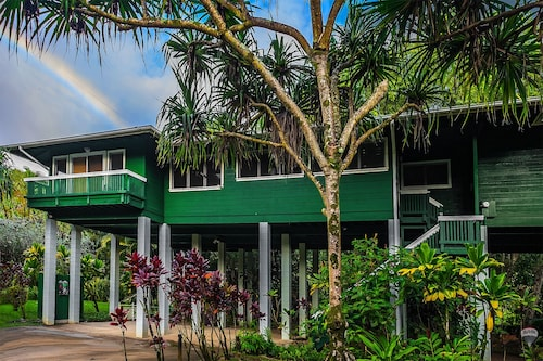 Reduced Rate! Tree House Nestled Along a Stream & Tropical Surroundings