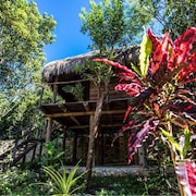Nice Wood Cabin in the Mayan Jungle