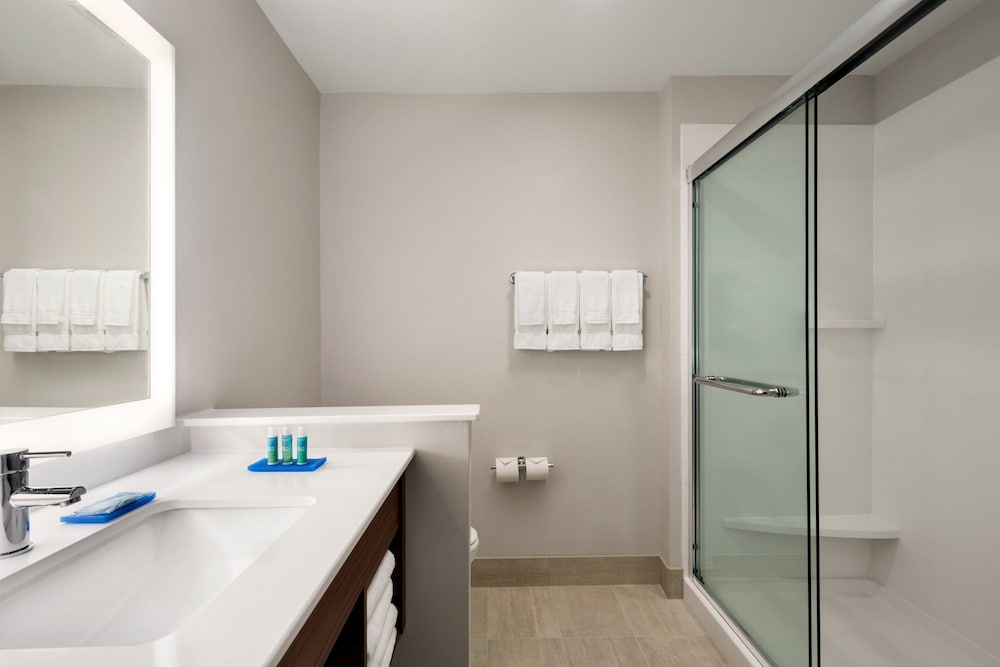 Bathroom, Holiday Inn Express & Suites West Des Moines - Jordan Creek, an IHG Hotel