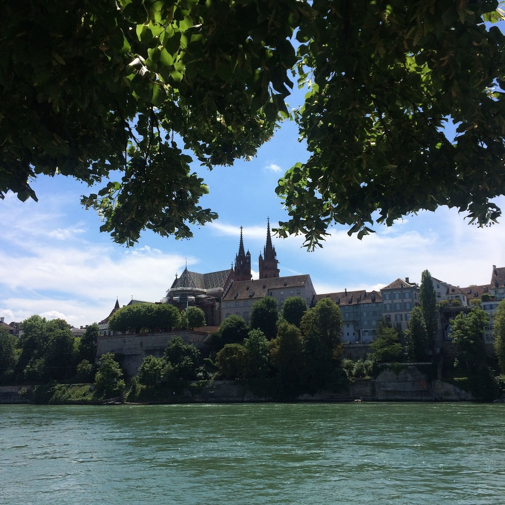 View from Property, In Swiss Home Rhine Riverside