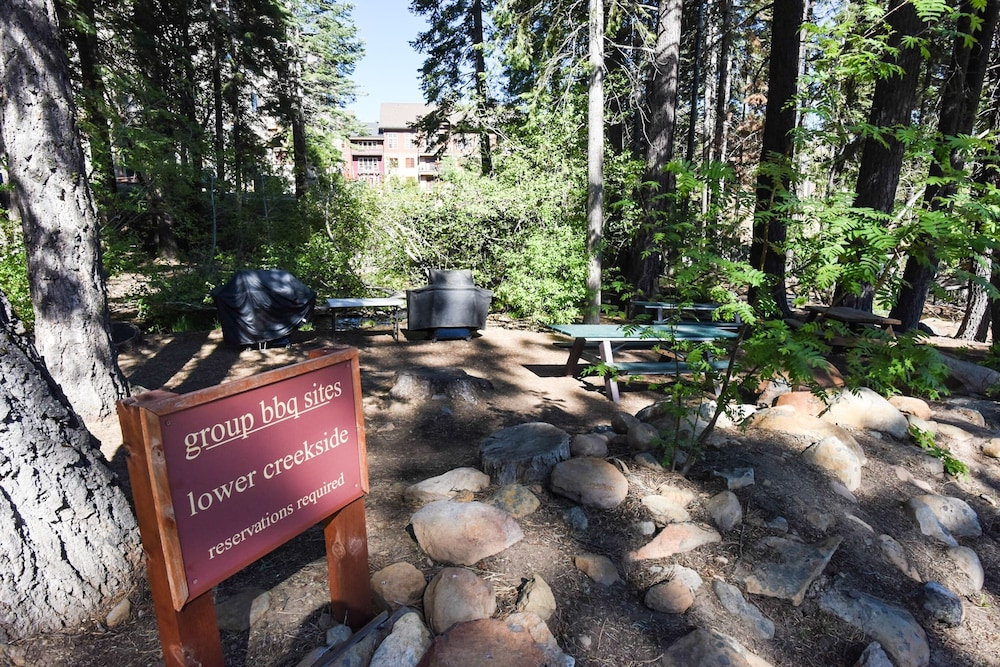 Property Grounds, Northstar Village 215