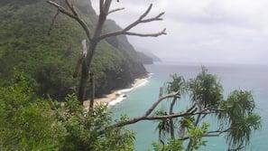 Sun-loungers, beach umbrellas, beach towels