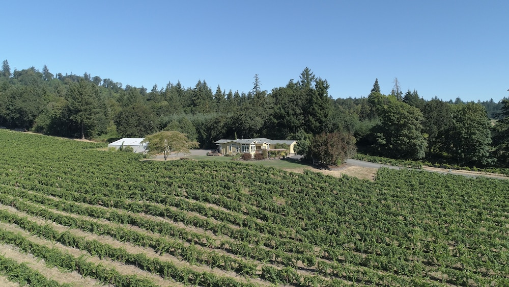 Property Grounds, Wine Country Getaway on a Working Vineyard!