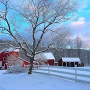 Huckleberry Farm Too Spring Specials Now Available $350/night