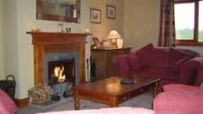 TV, fireplace, video games, DVD player