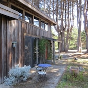 Chapman Point Cottage- Lavish Simplicity Across the bay From Mendocino