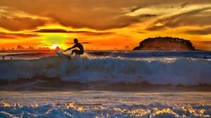 On the beach, sun-loungers, surfing