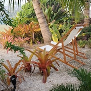 Tropical Oasis Minutes to Beach, Walking Distance to Shopping and Dearborn St