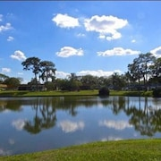 Leave the Cold Behind, and Experience Kings Point in Sun City Center, Florida