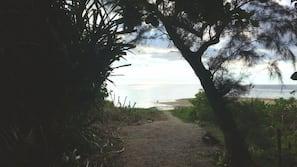 海灘、白沙