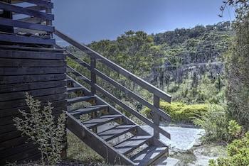 Kunzea at Freycinet Tasmania Australia