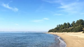 Sun-loungers, beach umbrellas, scuba diving, motor boating