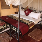 Ngorongoro Forest Tented Lodge - All Inclusive