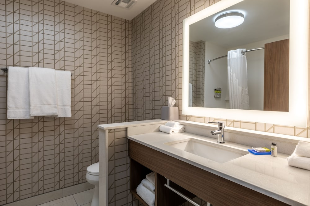 Bathroom, Holiday Inn Express & Suites Gainesville - Lake Lanier Area, an IHG Hotel