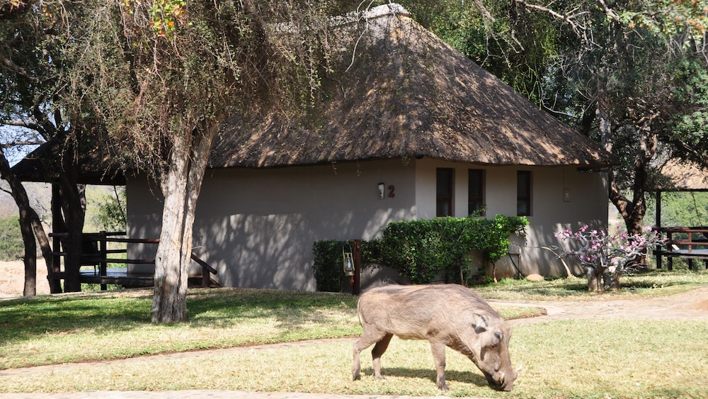 Front of Property, Nyati Safari Lodge - All Inclusive