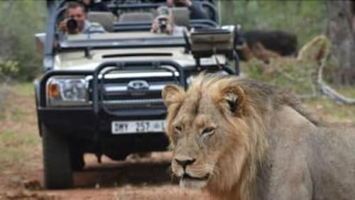 Game Viewing, Nyati Safari Lodge - All Inclusive