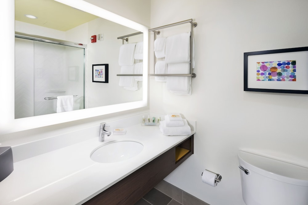 Bathroom, Holiday Inn Hotel and Suites Arden - Asheville Airport