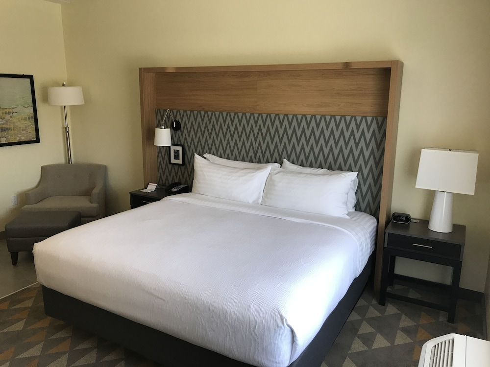 Room, Holiday Inn Hotel and Suites Arden - Asheville Airport