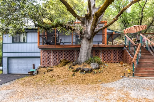 Comfortable 2BR Placerville Cabin W/forested Views