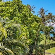 Aloha Condos, Napili Bay Resort, Condo 217, Beach View, Renovated