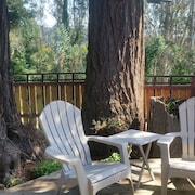 Three Trees Hollow - Charming, Classy Studio in Downtown Arcata