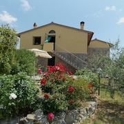 Vacation Home in Falgano With 3 Bedrooms Sleeps 6